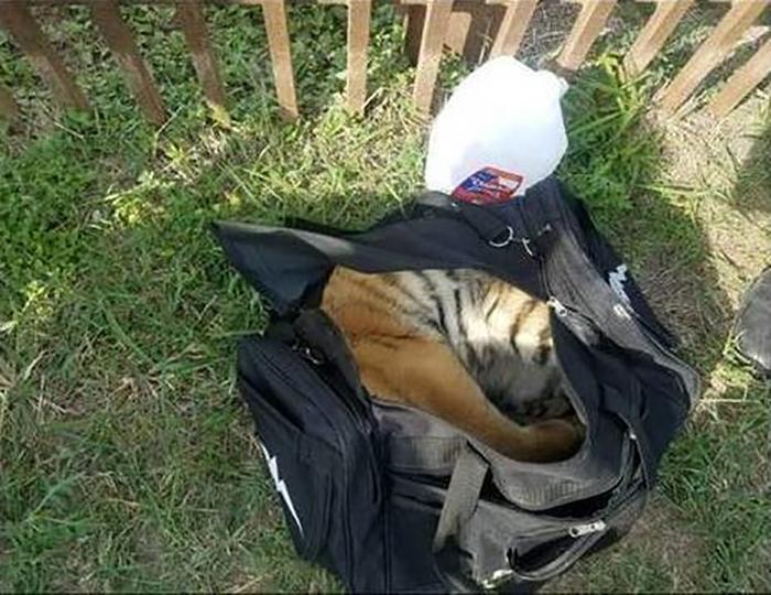 Нелегалы пытались перевезти в США груз в черной брезентовой сумке.