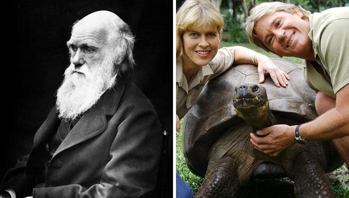 В 2006 году умерла черепаха, которая лично встречалась с Чарльзом Дарвином.