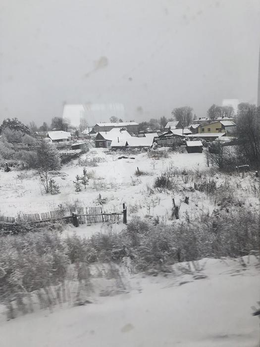 За окном зима, лес и домики.