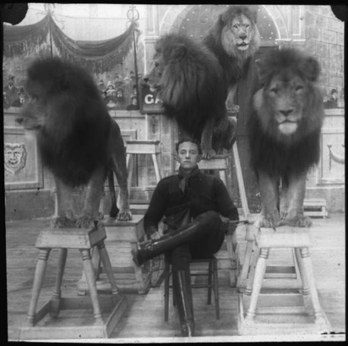Укротитель львов.