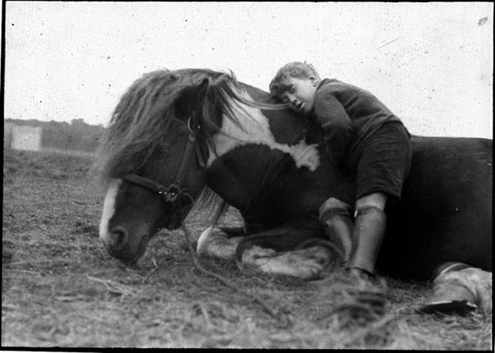 Мальчик с лошадью.