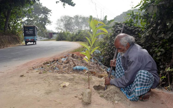 Абдул Самад Шейкх, 60-летний старик из Бангладеша, сажающий деревья с 12-летнего возраста.