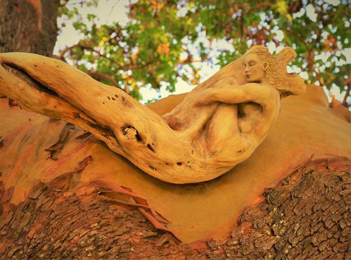 Скульптура из дерева. Автор: Debra Bernier.