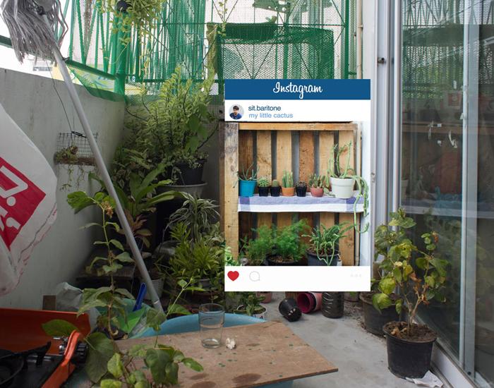 Аккуратный садик на балконе. Автор фото: Chompoo Baritone.