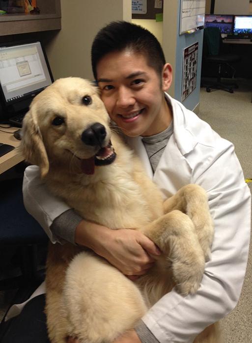 *Собака моего брата ужасно радуется каждый раз, когда встречает ветеринара, спасшего ее жизнь*.