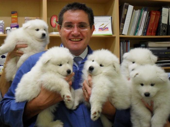*Моему папе нравится работать ветеринаром*.