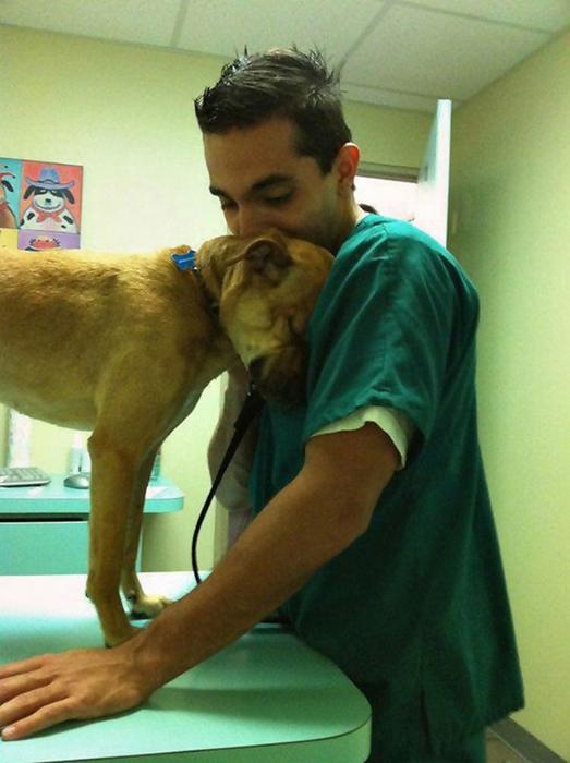Ветеринар и его собака.