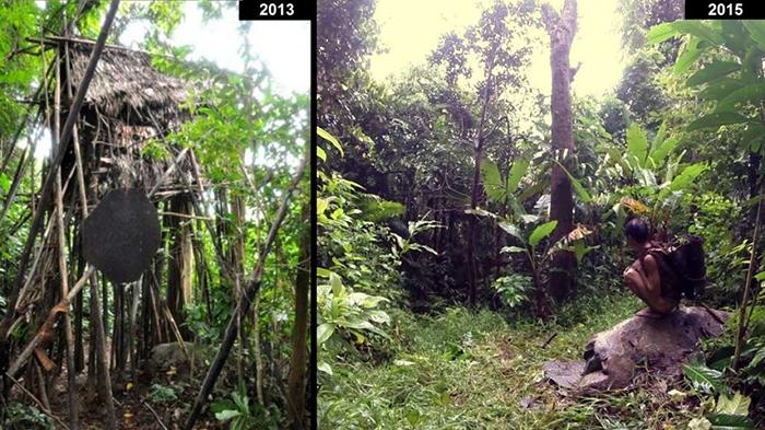 Дом, из которого *спасли* Ланга и Танга в день спасения и два года спустя.