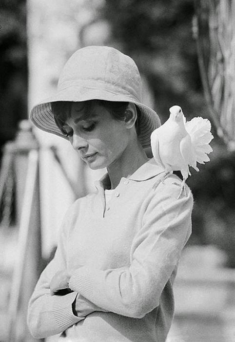 Одри Хепберн. Автор фото: Terry O'Neill.