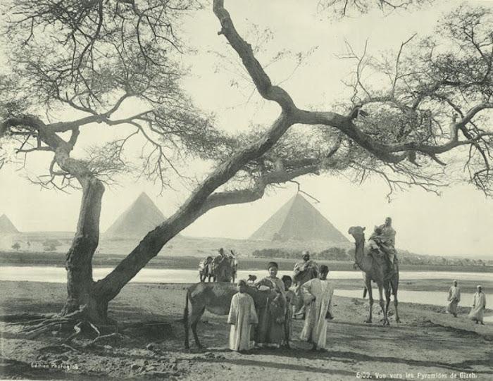 Вид на пирамиды в Гизе.