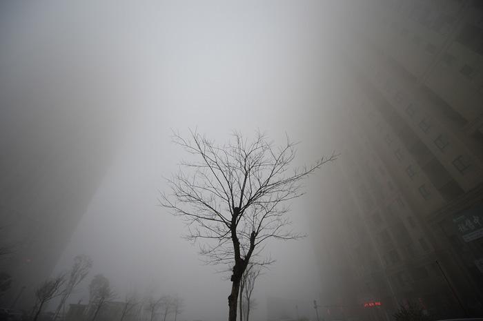 Здания скрываются за сильным смогом. 20 декабря 2016.