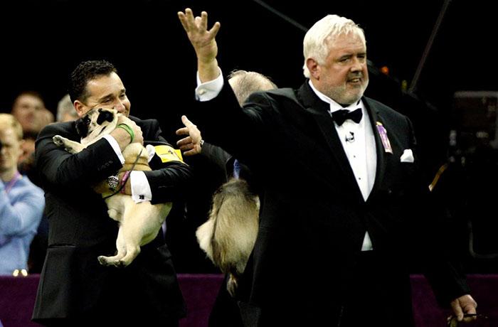 Хозяин обнимает свою собаку, получившую награду в одной из номинаций конкурса.