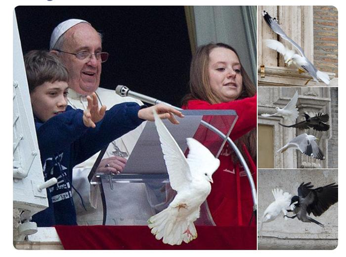 Инцидент с голубями во время выступления Папы Римского.