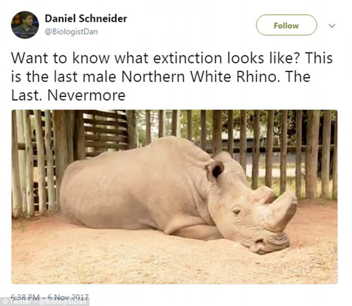 Пост в Твиттере биолога Даниэля Шнайдера, который помог снова обратить внимание на проблему.