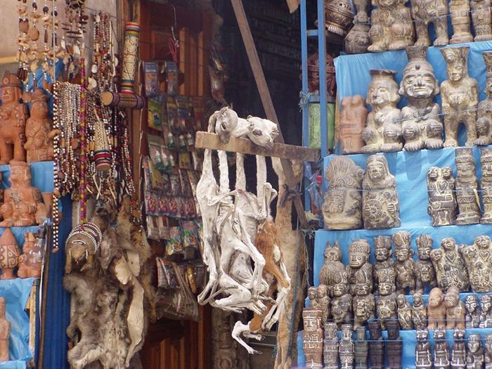Шкуры и сушеные тела животных. Фото: David Smith.