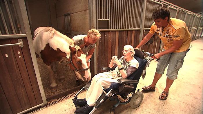 Последнее желание - прокатиться на лошади.