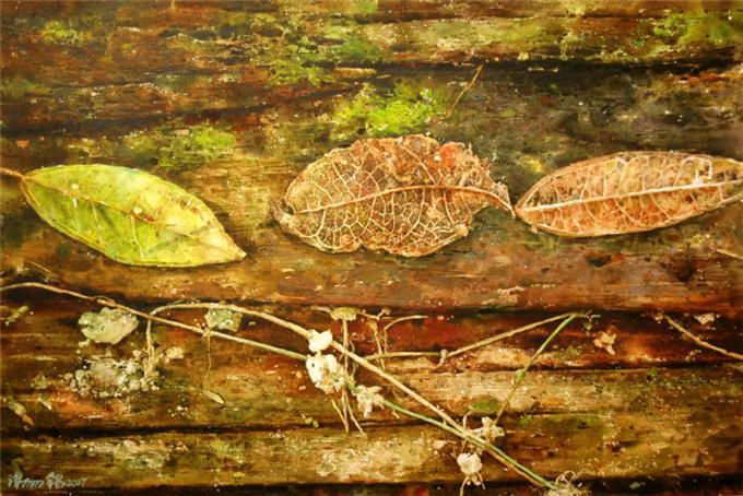 Опавшие листья.