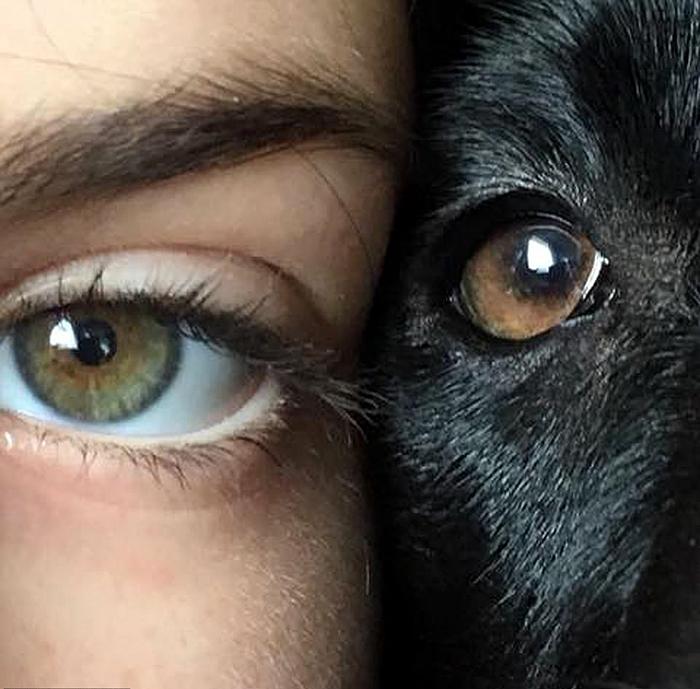 11-летняя Милли вместе со своей собакой по кличке Уиллоу. Фото: Millie Rodgers.
