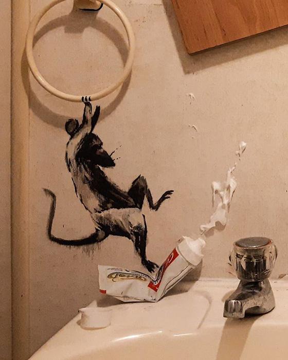 Крысы погрузили быт Бэнкси в хаос.
