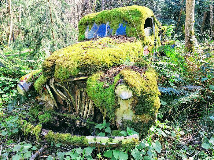 Судя по всему этим автомобилем давно никто не управлял.