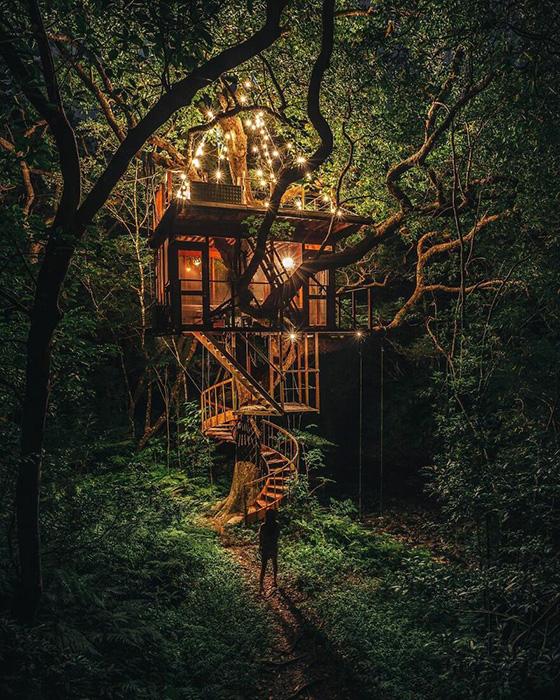 Наверное, самый лучший дом на дереве.