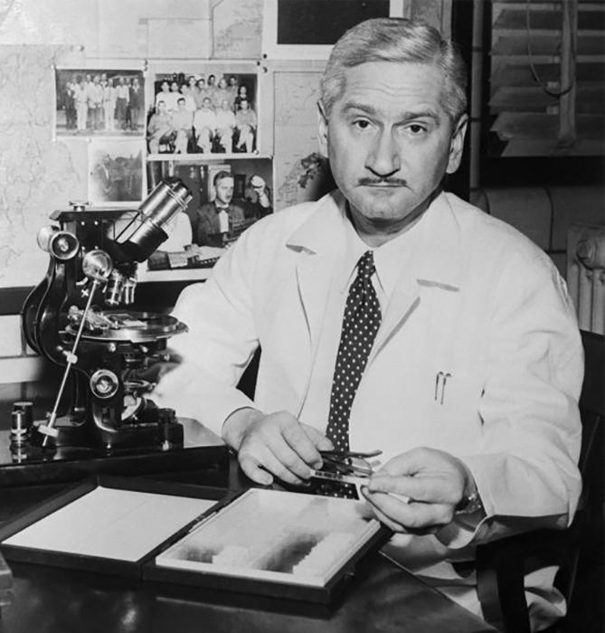 Доктор Альберт Сабин за работой в своей лаборатории в Медицинском колледже Университета Цинциннати, который прославился благодаря изобретению оральной полиовакцины.