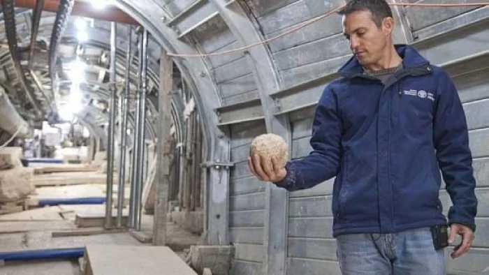 Нахшон Зентон, один из руководителей раскопками со снарядом катапульты