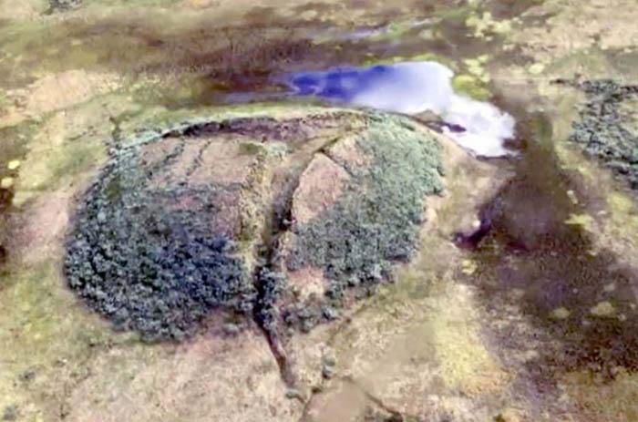 Один из курганов вечной мерзлоты на полуострове Ямал.