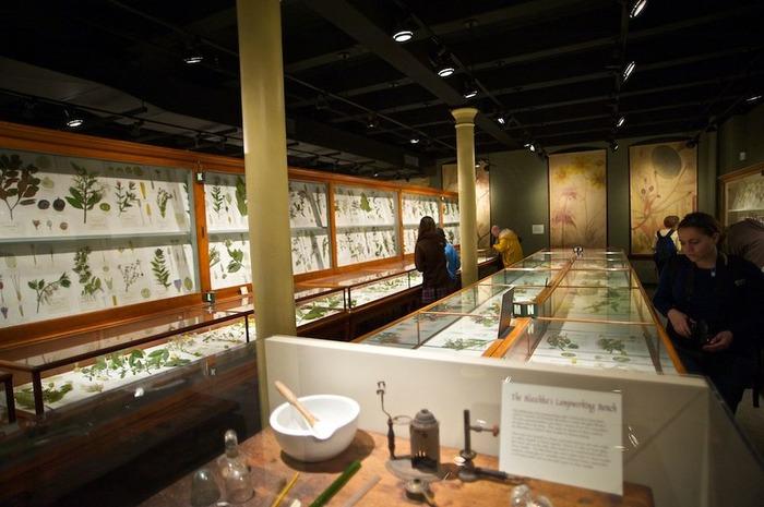 Музей Гарварда, где выставлены работы мастеров.