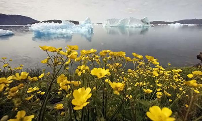 Гренландия - суровый, но бесконечно красивый край.