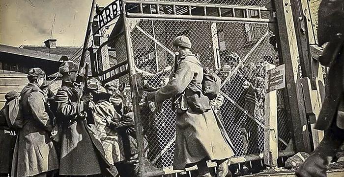 Освобождение Освенцима.