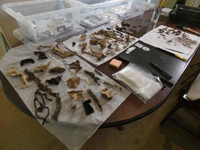 Некоторые из найденных исторических артефактов.