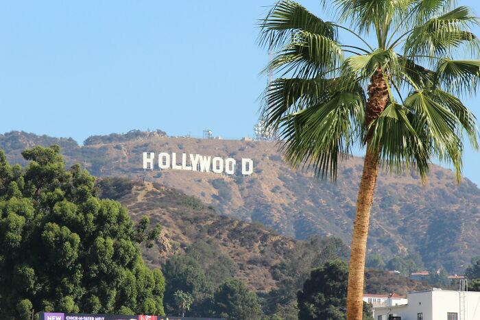 Голливудские холмы.
