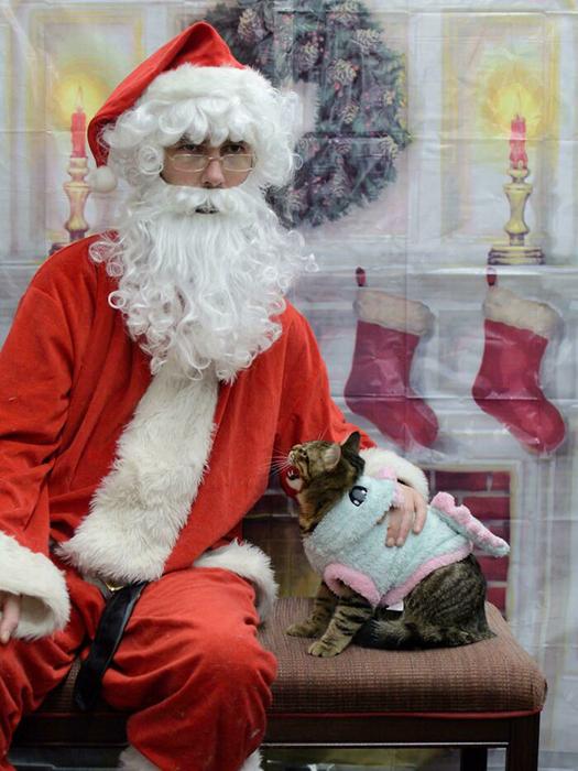 Санта! Я ненавижу тебя!