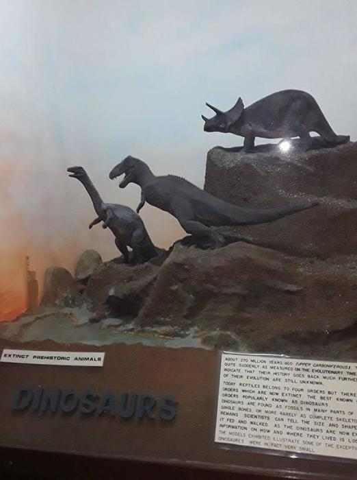 У музея в Кении мало средств, поэтому они симпровизировали и создали своих динозавров из глины.