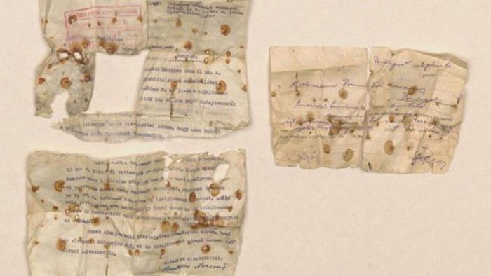 Документы Амоса Штайнберга, которые сохранились благодаря его матери.