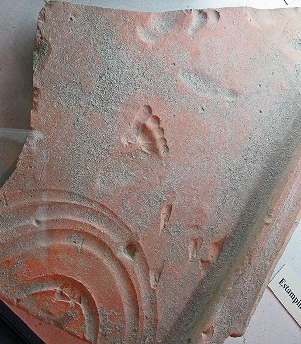 Оманская глиняная плитка со следом, оставленным малышом, когда она высыхала 2000 лет назад, Везон-ла-Ромен (Ancient Vasio Vocontiorum).