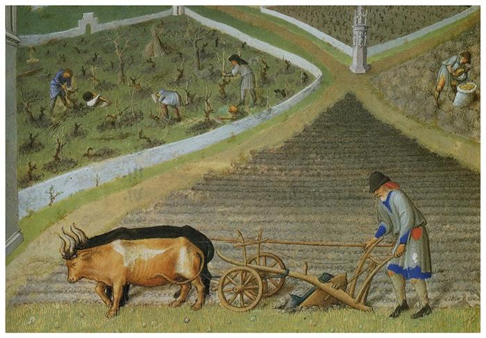 Изобретение тяжёлого плуга и сбруи позволило сделать мощный скачок в развитии сельского хозяйства.