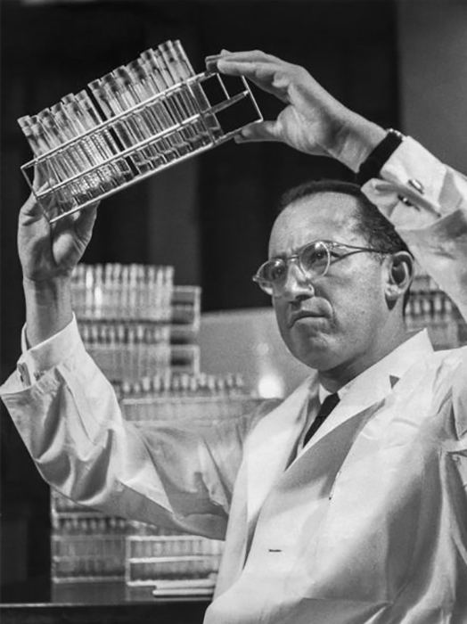 Доктор Джонас Солк, который разработал вакцину против полиомиелита, в своей лаборатории в Питтсбургcком университете.