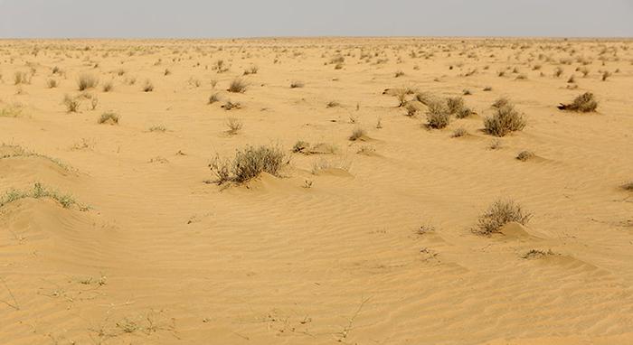 Многомесячные засухи уничтожают регион.