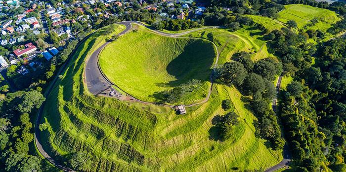 Специалисты будут продолжать исследования об изменениях поведения ежей в Новой Зеландии.