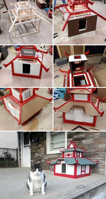 Три месяца мы строили для кошки этот прекрасный отапливаемый домик. Выражение её мордочки, когда мы его презентовали.