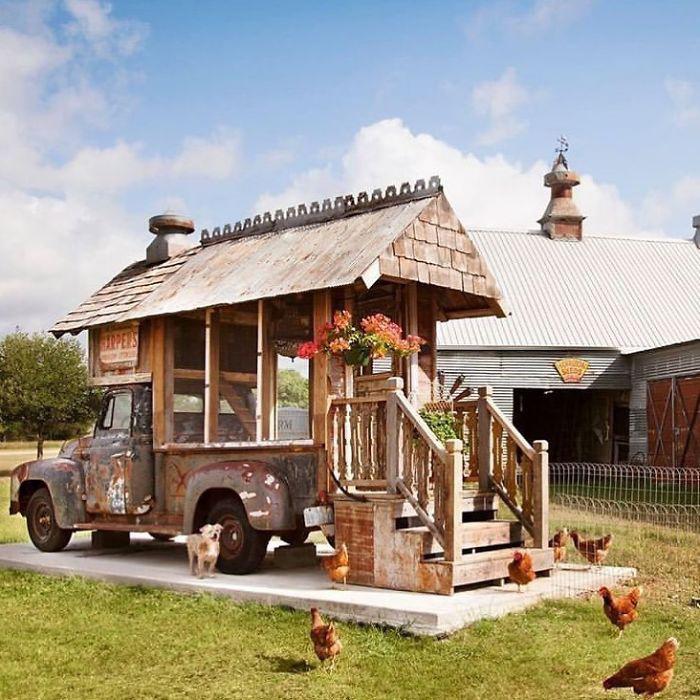 Старый грузовичок уже не на ходу, а курочкам комфортный дом.