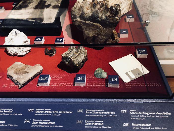 Краеведческий музей решил добавить дискету в раздел окаменелостей.