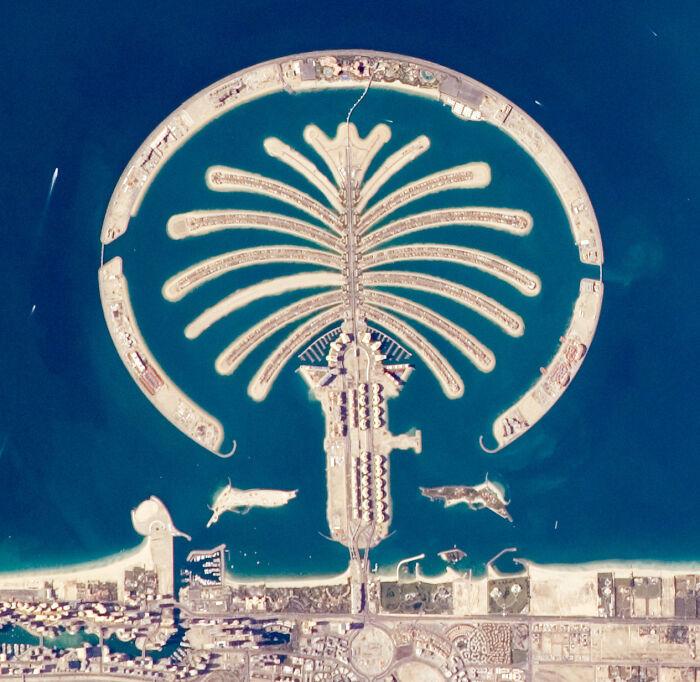 ОАЭ - богатая древняя культура, трансформировавшаяся в современный мир больше, чем хотелось бы.