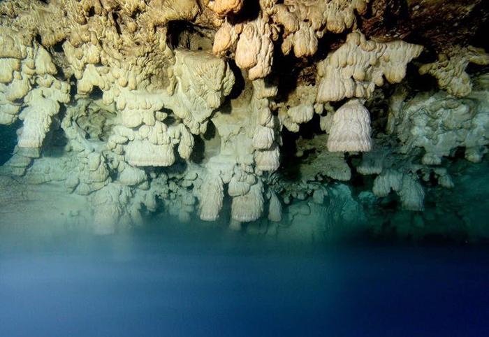 Поверхность пещеры покрыта ими почти полностью.