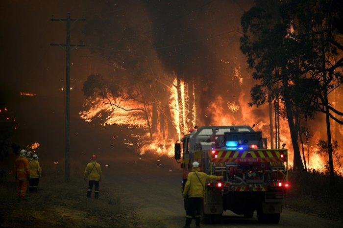 Пожарные борются с быстро распространяющимся пламенем.