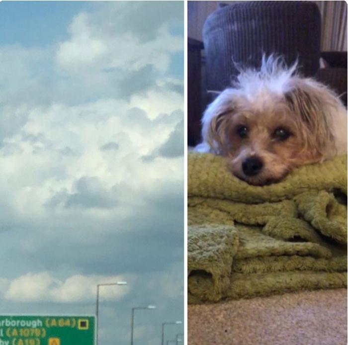 Через несколько часов после её смерти, Люси увидела Санни в облаках.
