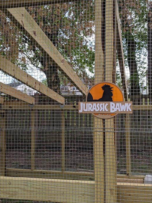 Какие куры живут в парке юрского периода?