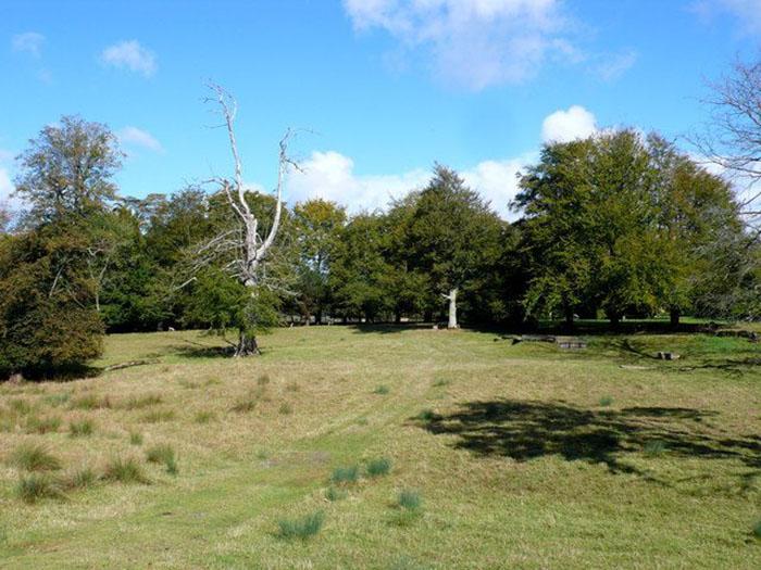 Усадьбу окружает 131 акр прекрасных земель.